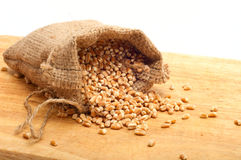 Cevada de pérola crua em um saco da lona Foto de Stock Royalty Free