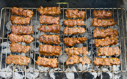 Cevapcici on the grill Stock Image
