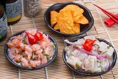 Ceviche金枪鱼和三文鱼 库存照片