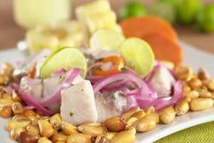 ceviche περουβιανό ύφος Στοκ εικόνες με δικαίωμα ελεύθερης χρήσης