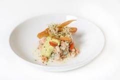 Ceviche Σαλάτα με το σολομό και τα λαχανικά Στοκ Φωτογραφίες
