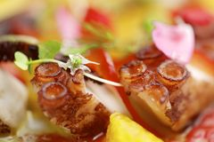 Ceviche осьминога Стоковые Фото