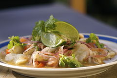 Ceviche Royalty Free Stock Image