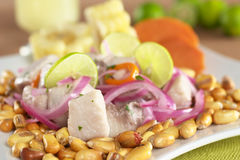 ceviche秘鲁人样式 免版税库存图片