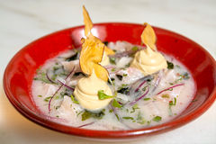 Ceviche Stock Afbeelding
