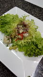 Ceviche Royalty-vrije Stock Fotografie