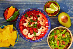 Ceviche Camaron shrimp nachos and guacamole Stock Photography