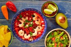 Ceviche Camaron shrimp nachos and guacamole royalty free stock photos