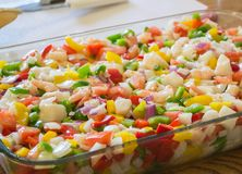 Ceviche Stock Photography