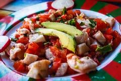 Ceviche com tomates e abacate, Chiapas, México fotografia de stock royalty free
