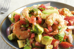 Ceviche con camarones - shrimp ceviche royalty free stock photos