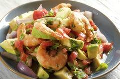 Ceviche con camarones - shrimp ceviche Stock Images
