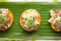 Ceviche on Crackers Stock Photography