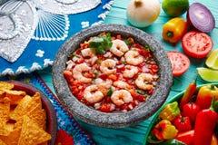 Ceviche de Camaron shrimp molcajete from Mexico stock images