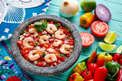 Ceviche de Camaron shrimp molcajete from Mexico Stock Image
