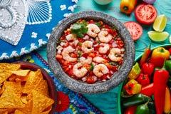 Ceviche de Camaron shrimp molcajete from Mexico royalty free stock photo