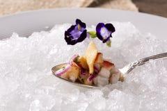 Ceviche diente auf alten Löffeln in der Platte mit Eis geschmackvoll lizenzfreies stockfoto