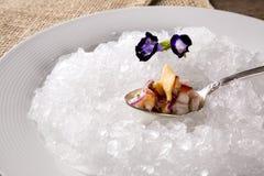 Ceviche diente auf alten Löffeln in der Platte mit Eis geschmackvoll Stockfotografie