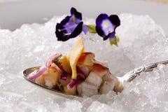 Ceviche diente auf alten Löffeln in der Platte mit Eis geschmackvoll Lizenzfreie Stockbilder