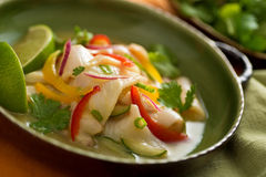 Ceviche. A freshly made white fish ceviche with red onion, red pepper, yellow pepper, cucumber, lime, and green onion Stock Image