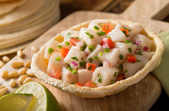 Ceviche. A freshly made white fish ceviche with tomato, red onion, cilantro, red pepper, lime, and serrano pepper Stock Photography