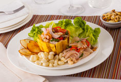 Ceviche Panamá fotografia de stock royalty free