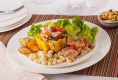 Ceviche Panama royaltyfri fotografi