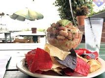 Ceviche per il pranzo all'aperto di estate con i chip di tortiglia multicolori Fotografie Stock