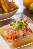 Ceviche Peruano Royalty Free Stock Images