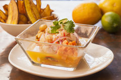 Ceviche Peruano Royalty Free Stock Photography