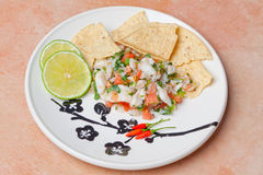 Ceviche Platter Stock Image