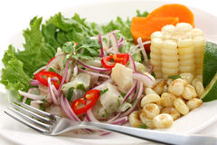 Ceviche, seafood dish, peruvian cuisine Royalty Free Stock Photos