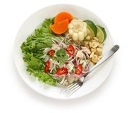 Ceviche, seafood dish, peruvian cuisine Stock Photo