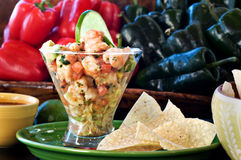 Ceviche with Tortilla chips Royalty Free Stock Images