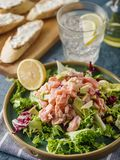 Ceviche is a traditional dish from Peru. Salmon marinated in lemon with fresh lettuce, avocado and onions. Peruvian food royalty free stock images