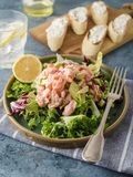 Ceviche is a traditional dish from Peru. Salmon marinated in lemon with fresh lettuce, avocado and onions. Peruvian food stock photo
