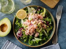 Ceviche is a traditional dish from Peru. Salmon marinated in lemon with fresh lettuce, avocado and onions. Peruvian food royalty free stock image