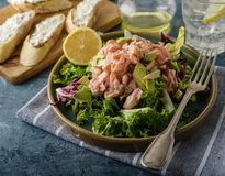 Ceviche is a traditional dish from Peru. Salmon marinated in lemon with fresh lettuce, avocado and onions. Peruvian food royalty free stock photos