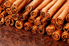 Ceylon cinnamon Royalty Free Stock Photo