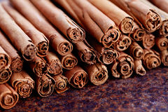 Ceylon cinnamon Royalty Free Stock Photography