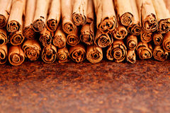 Ceylon cinnamon Stock Photography