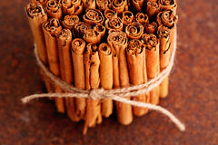 Ceylon cinnamon Royalty Free Stock Images