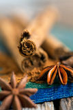 Ceylon cinnamon stick and star anise. Stock Images
