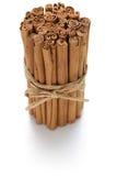 Ceylon kanelbruna pinnar royaltyfri foto