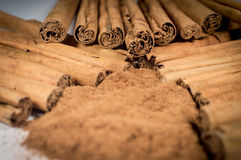 Ceylon riktigt kanelbruna pinnar och pulver Fotografering för Bildbyråer
