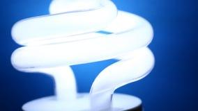 CFL żarówka zdjęcie wideo