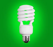 CFL Fluorescent Light Bulb on green Stock Photo