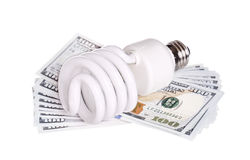 CFL Fluorescent Light Bulb with money dollar cash isolated Stock Photography