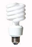 CFL Light Bulb Stock Photo