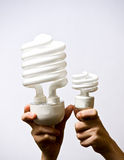 CFL Light Bulbs come in many sizes Stock Photo